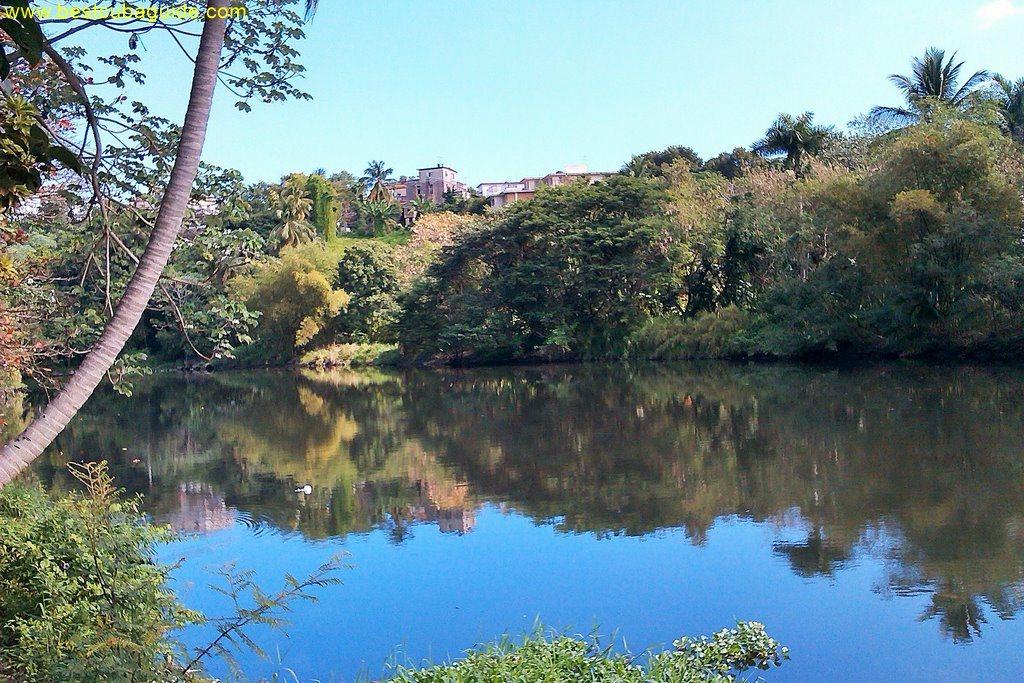 Parque Almendares River