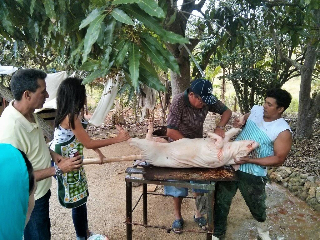 Cuban Pig Roast – Authentic Cuban Lechon Asado
